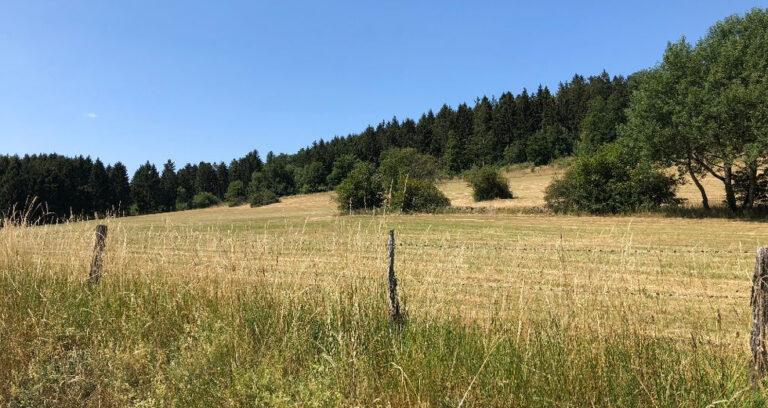 Kurztrip in den Harz
